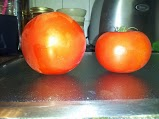 Store bought vs farmer's market tomato....Can you guess which is which?