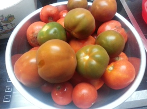 Fresh 2nd tomatoes...