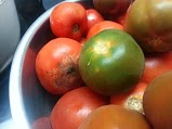 Second tomatoes....