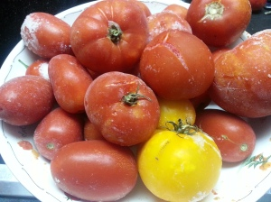 Frozen tomatoes too...
