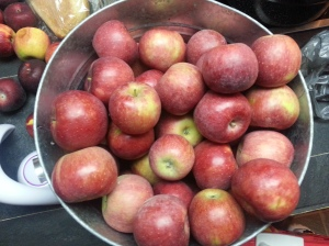 1/2 bushel of apples I bought from our local orchard. There were  clementines and bananas in there a couple of days ago.