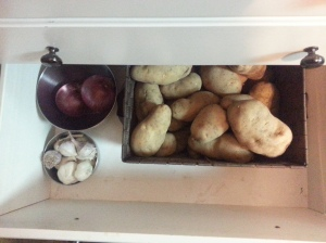 Root crop drawer. These are the biggest potatoes I have ever seen in my life.