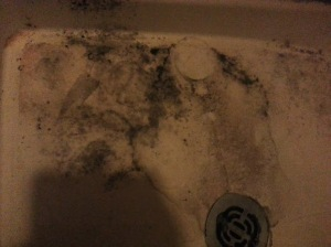 Master bath shower stall!!!!