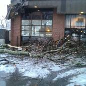 Local coffee house had some damage that forced them to remain closed today.